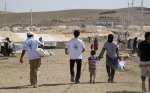 المفوضية السامية تثني على مساعدة الكويت لخمسين ألف لاجئ سوري…
