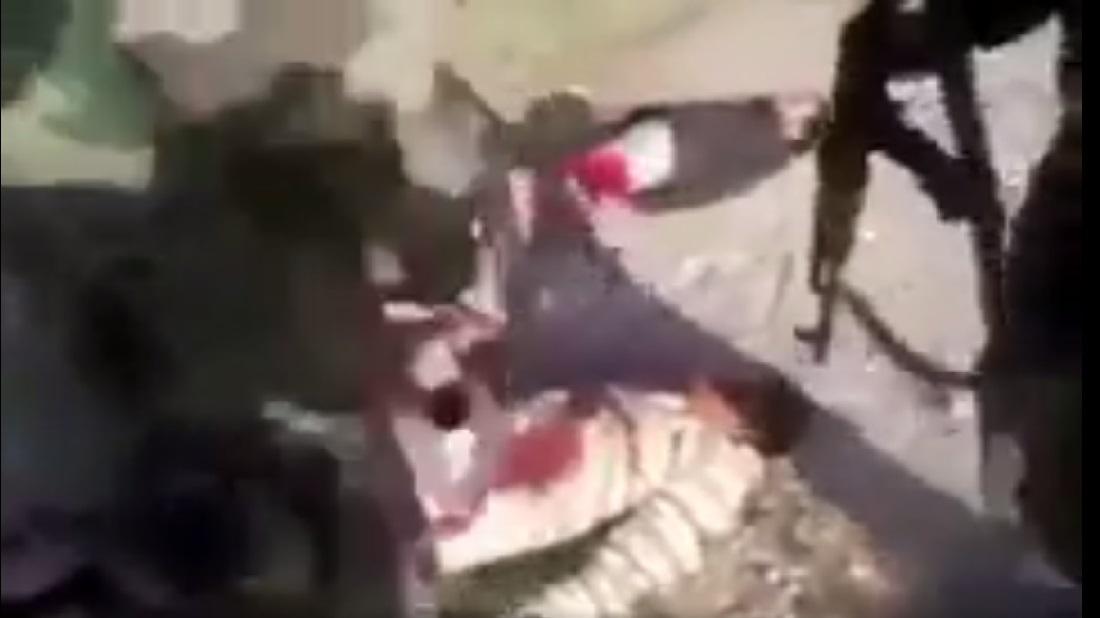 إعدام جرحى في حلب على يد ميليشيات تتبع للنظام