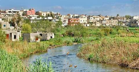 قرية تيرمعلة إحدى أجمل القرى والبلدات في ريف حمص