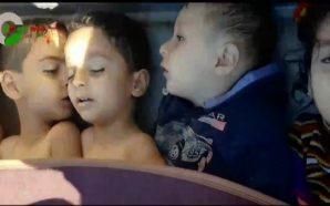 تيار الغد السوري يدين مجزرة الكيماوي في خان شيخون ويطالب…
