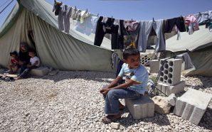 96 بالمئة من اللاجئين السوريين يريدون العودة