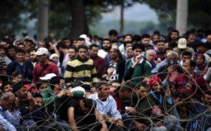 رومانيا تعلن استقبال 1942 لاجئا جديدا ورصد 5,3 ملايين يورو…