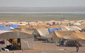 شباب دير الزور يفرون من جحيم داعش