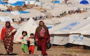 المجلس الأوروبي يبحث تمويل برامج رعاية اللاجئين السوريين في عمّان