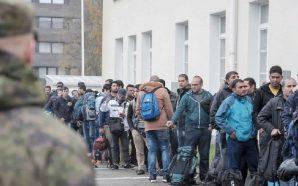 السلطات الألمانية تقرر استجواب عشرات الآلاف من طالبي اللجوء السوريين