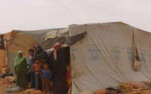 الأمم المتحدة تؤكد استعدادها للمشاركة في إغاثة مخيم الركبان بانتظار…