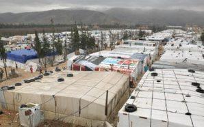 المفوضية السامية تنجح بمساعدة 50 ألف لاجئ سوري في لبنان