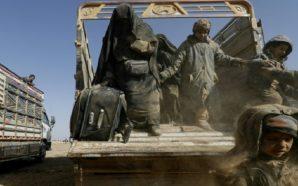 تحقيقات مستفيضة يخضع لها الخارجون من مناطق سيطرة تنظيم داعش…