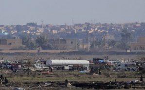 مقتل 17 عنصرا من تنظيم داعش خلال مواجهات مع قوات…