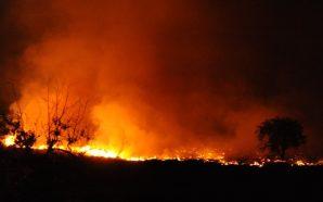 مقتل مواطن وإصابة آخرين جراء حريق جنوبي مدينة دمشق